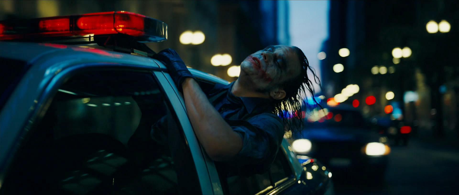 Batman Carries On Beginning In The Dark Knight Seal Skeleton Diagram Http Wwwsolarnavigatornet Animalkingdom
